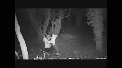 Two teens caught fucking in public woods on a hidden cctv trail camera